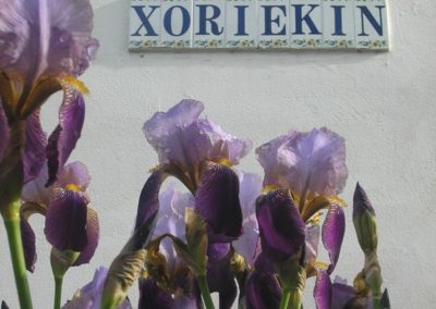 Xoriekin Gite Saint Jean Pied de Port